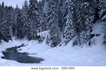 Snowy River 5