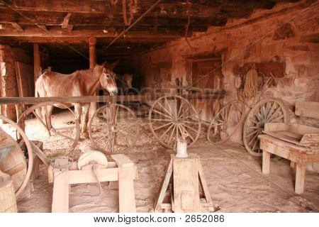 Antique Horse Barn