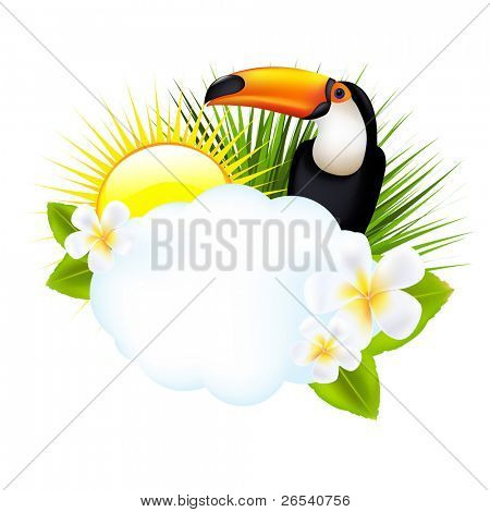 Tropical Illustration With Toucan, Isolated On White Background, Vector Illustration