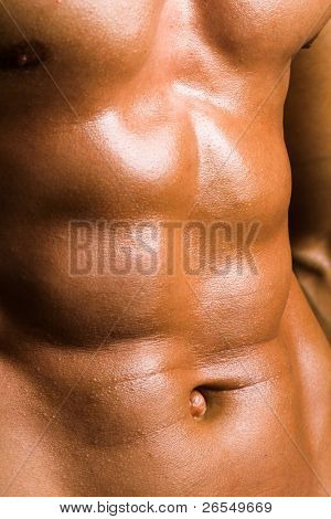 Close up of perfect male torso, bodybuilder's ABS