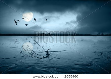 Frozen Lake In Moonlight