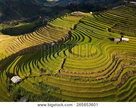 Vietnam Landscapes Rice Fields On