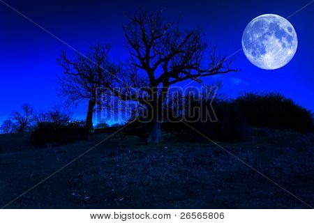 Dead tree at midnight with a glowing full moon