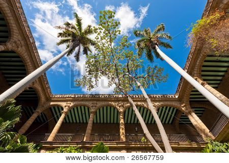 The arches and columns of the ancient spanish government palace in Old Havana with an exuberant tropical vegetation
