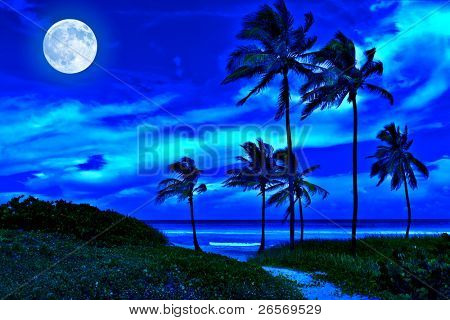 Romantic tropical beach at night with a bright full moon