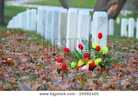 Headstones and flower in autumn in Arlington National Cemetery - Washington DC United States