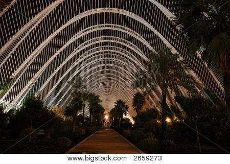 L'Umbracle  In Valence, Spain