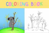 Childrens Coloring Book With Cartoon Animals. Educational Tasks For Preschool Children Nice Koala poster