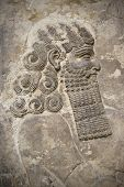 image of sumerian  - Head of an ancient assyrian warrior carved in stone - JPG