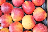 View Close-up Of Fresh Peaches. Juicy Peaches. A Lot Of Peaches. poster