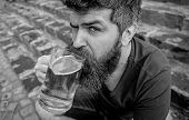 Guy Having Rest With Cold Draught Beer. Hipster On Calm Face Drinking Beer Outdoor. Man With Beard A poster