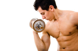 picture of lifting weight  - Powerful muscular man lifting weights - JPG