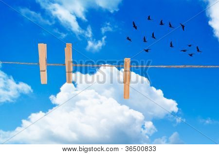 Clothes pegs on washing line against a summer blue sky with flying birds