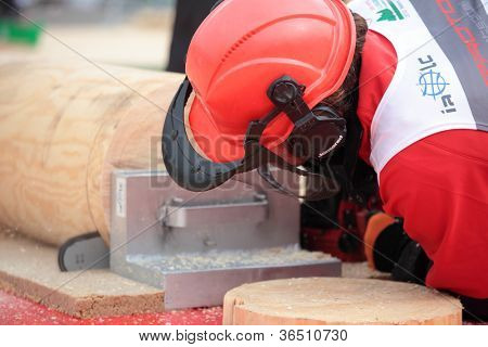 RAUBICHI, BELARUS - AUGUST 25: Spaniard Oriol Mola Fuster performs precision bucking during World Logging Championship in Raubichi, Minsk region, Belarus at August 25, 2012