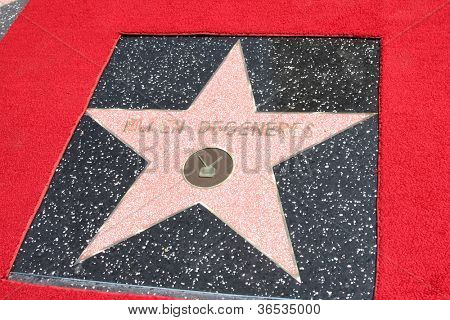 LOS ANGELES - SEP 4:  Ellen DeGeneres Star at the Hollywood Walk of Fame Ceremony for Ellen Degeneres at W Hollywood on September 4, 2012 in Los Angeles, CA