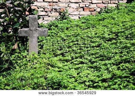 Old Abandoned Grave