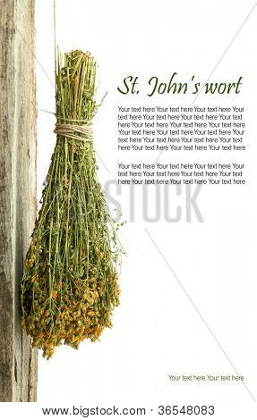 Dried St. John's wort plant hanging from a rope with copy space