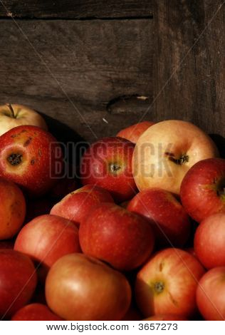 Sunset On Crated Apples