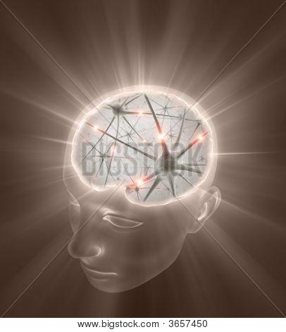 Concepto de mente abierta