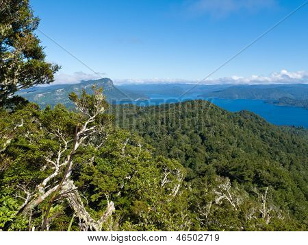 Scenic Urewera Np With Lake Waikaremoana In Nz