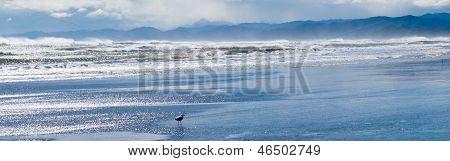 Stürmisches Meer Surfen zornig Pounding Beach
