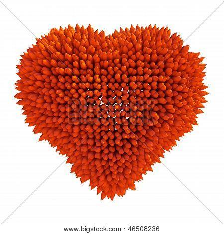 Dangerous Love: Sharp Acidotus Heart Shape