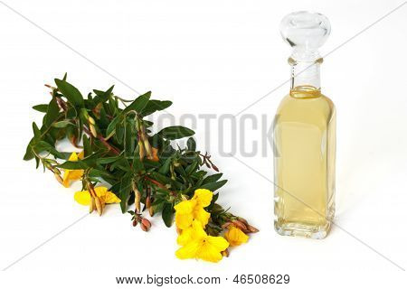 Evening Primerose With Oil Bottle