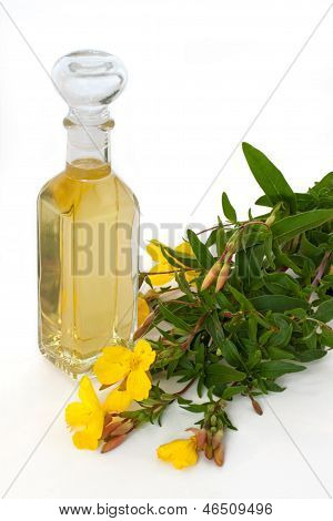 Evening  Primrose Oil With Blossoms