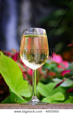 Tropical White Wine