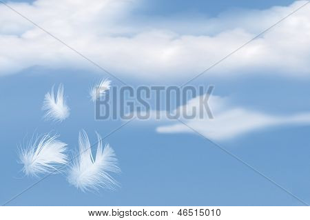 Feathers Floating Into Cloudy Sky