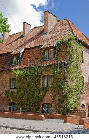 Old Building With Ivy In Malbork
