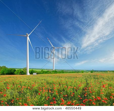 Windmills on a field in the early spring makovm