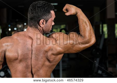 Male Bodybuilder Showing His Biceps