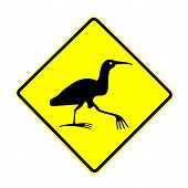 Nz Attention Bittern Crossing Road Sign On White