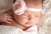 image of headband  - Headshot of a sleeping 8 day old newborn baby girl wearing a pink flower headband - JPG