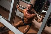 picture of squatting  - body builder doing squat with barbell in gym