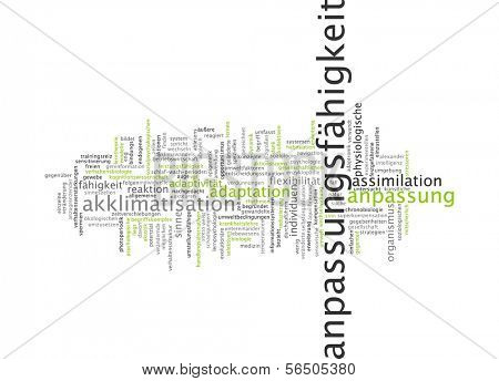 Word cloud - adaptability