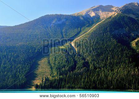 Avalanche Path At Emerald Lake, Yoho National Park, Canada