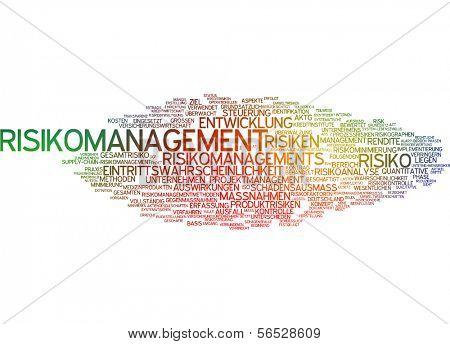 Word cloud -  risk management