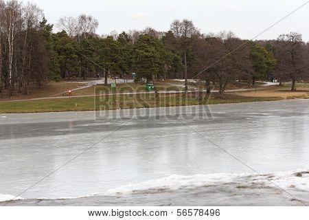 Pond In The Park «kuz'minki