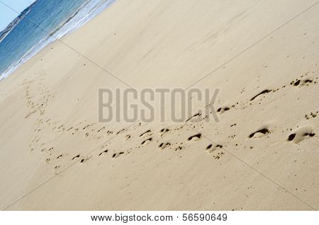 Footprints On The Shore.