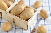 picture of solanum tuberosum  - Organic Potatoes fresh from the farmers market - JPG