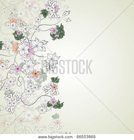 delicate flowers on a light background