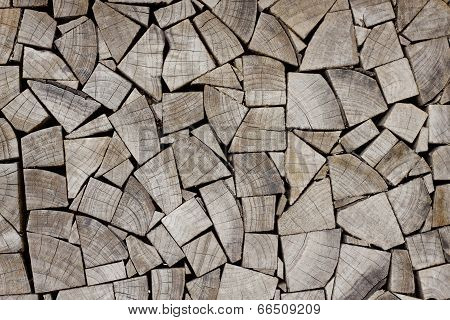 Wood Stump Texture
