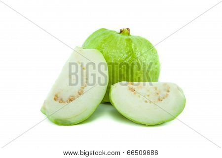 Psidium Guajava Linn Bright Green Guava