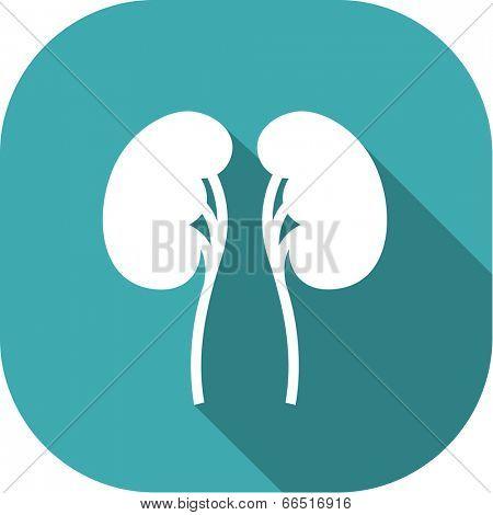 Medical Flat Icon