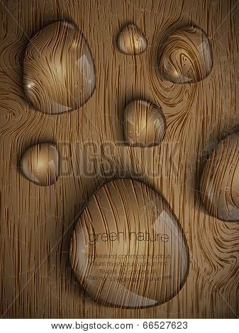 dew drops on a wooden background