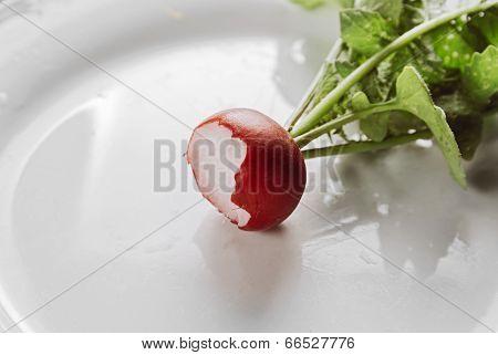 Eaten Radish