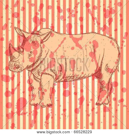 Sketch Rhino, Vector Vintage Background