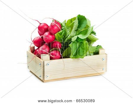 Bunch Of Radishes In A Wooden Box